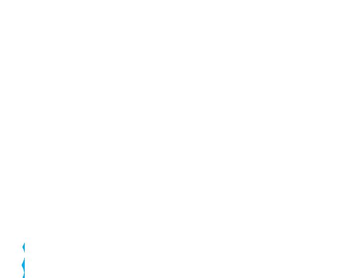 Lonestar Interior